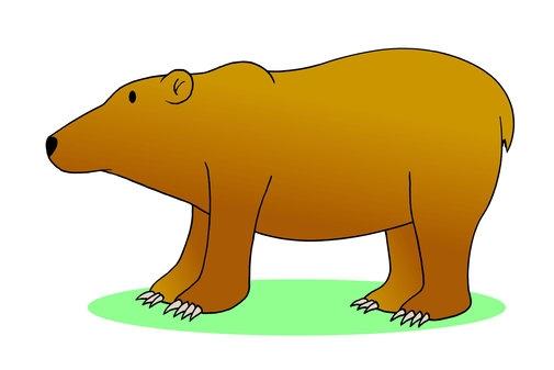 A Fuzzy Wuzzy Bear