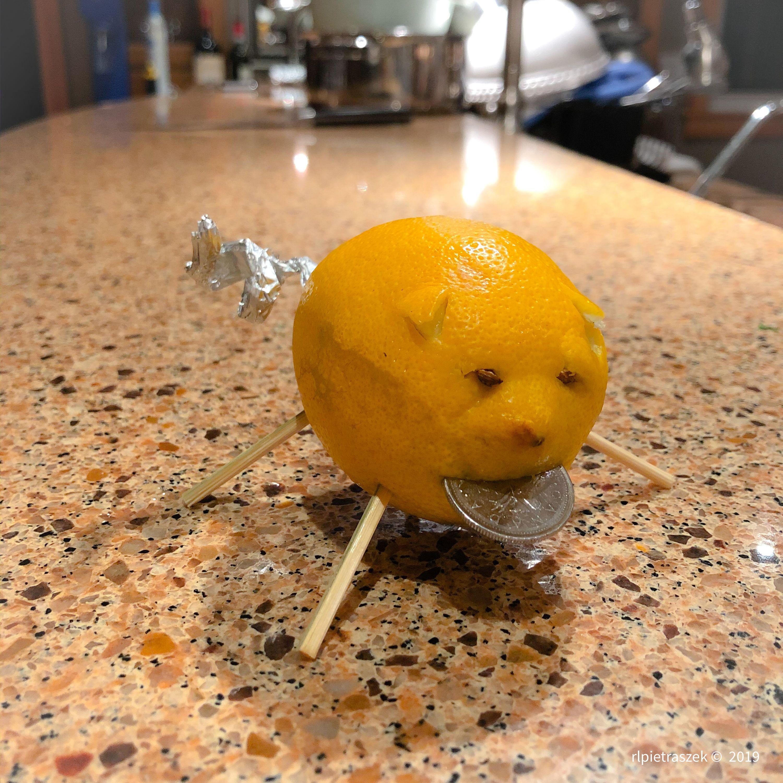new year lemon pig
