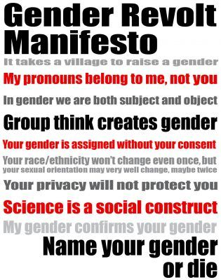 gender revolt manifesto written by Jay Sennett