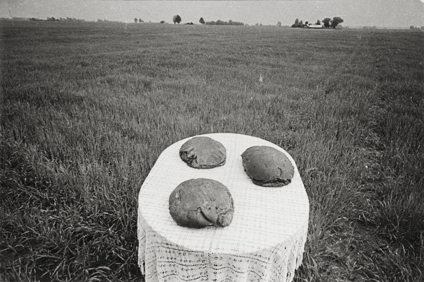 Romualdas Rakauskas. Duona. 1971