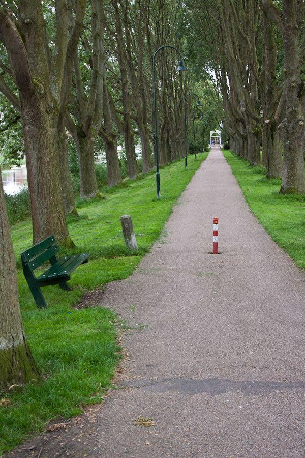A park in Edam