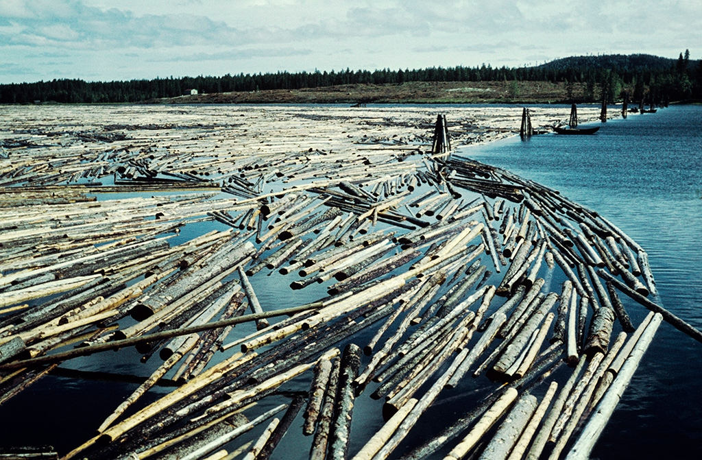 logs in ngermanlven river