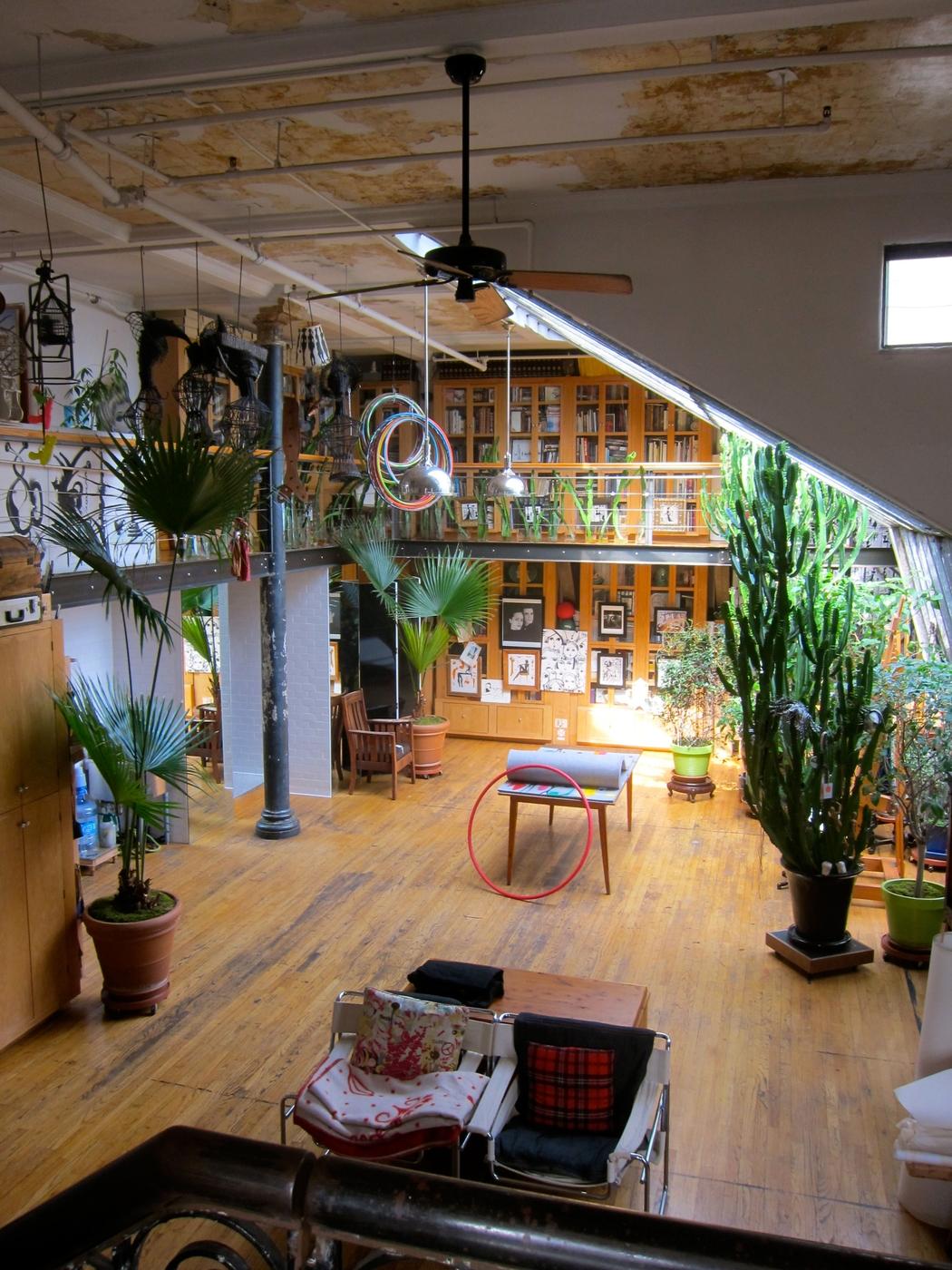 [plants] [desk] space