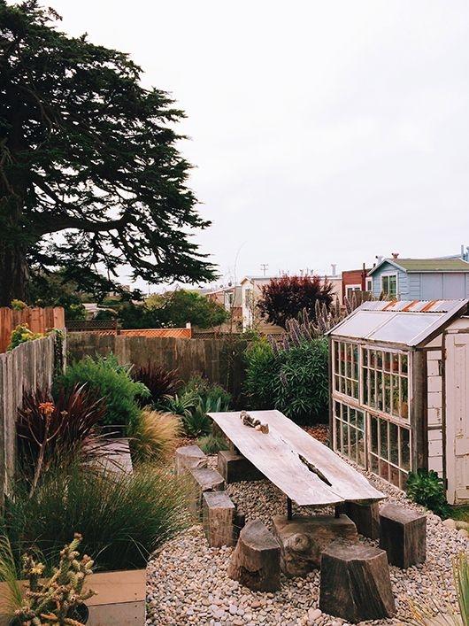 [yard] [plants]