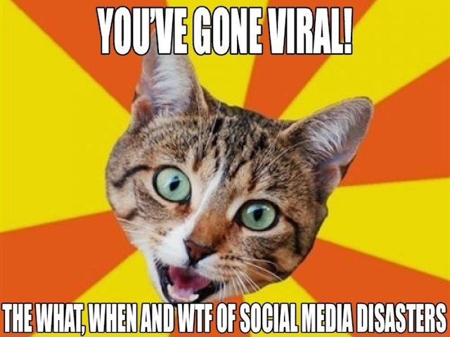 #SoMeSW presentation title slide reading 'You've Gone Viral: The What, When and WTF of Social Media Disasters'