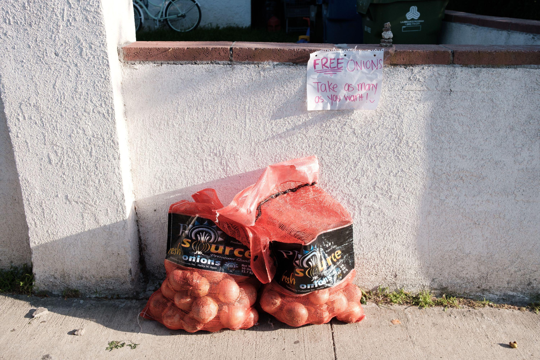 free onions