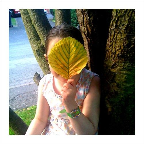 Lucy leaf
