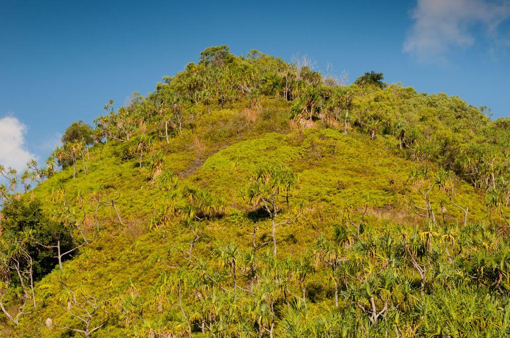 Highest Point on the Hanakapi'ai Trail