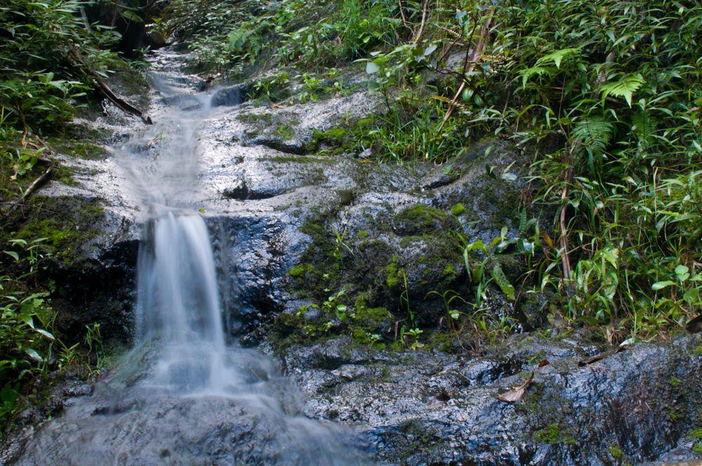 Small Stream on the Hanakapi'ai Trail