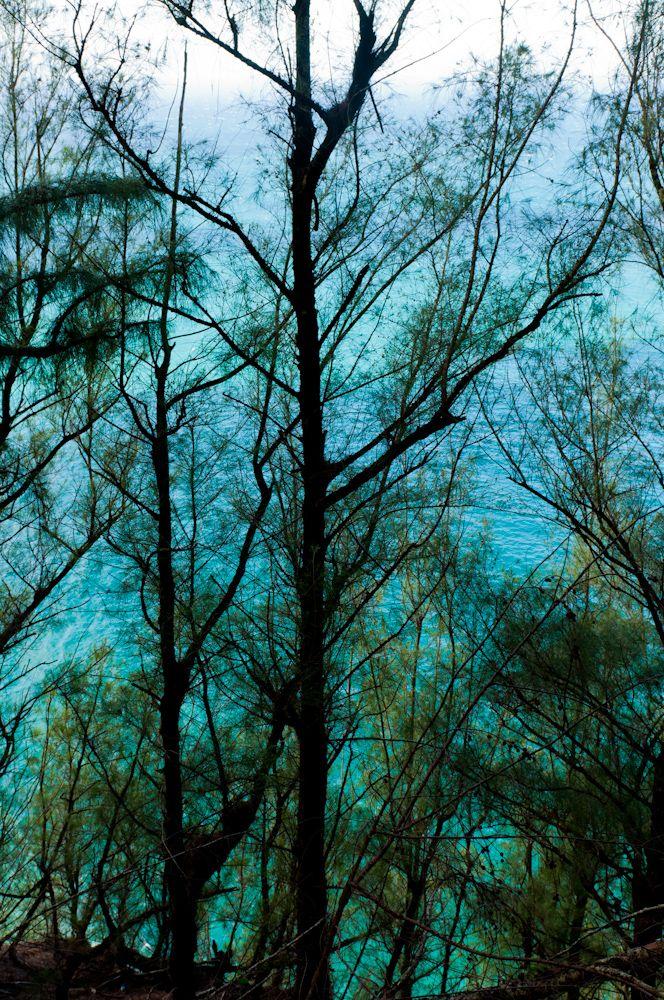 Turquoise Waters on the Hanakapi'ai Trail