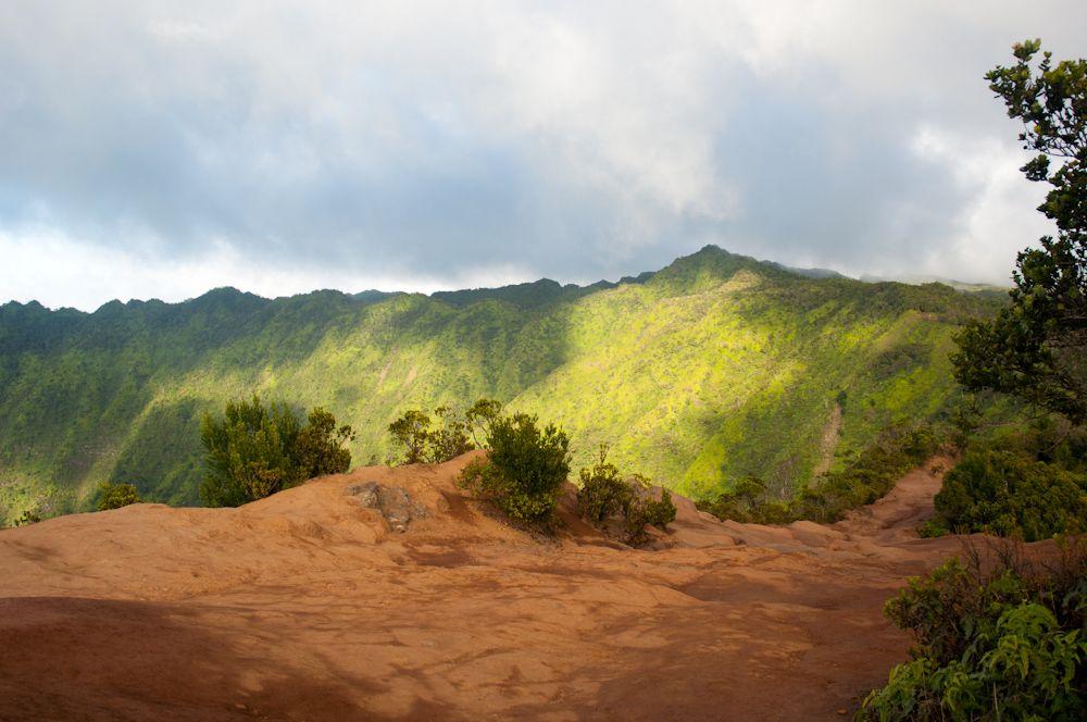 Na Pali Kona Forest Reserve Pihea Trail