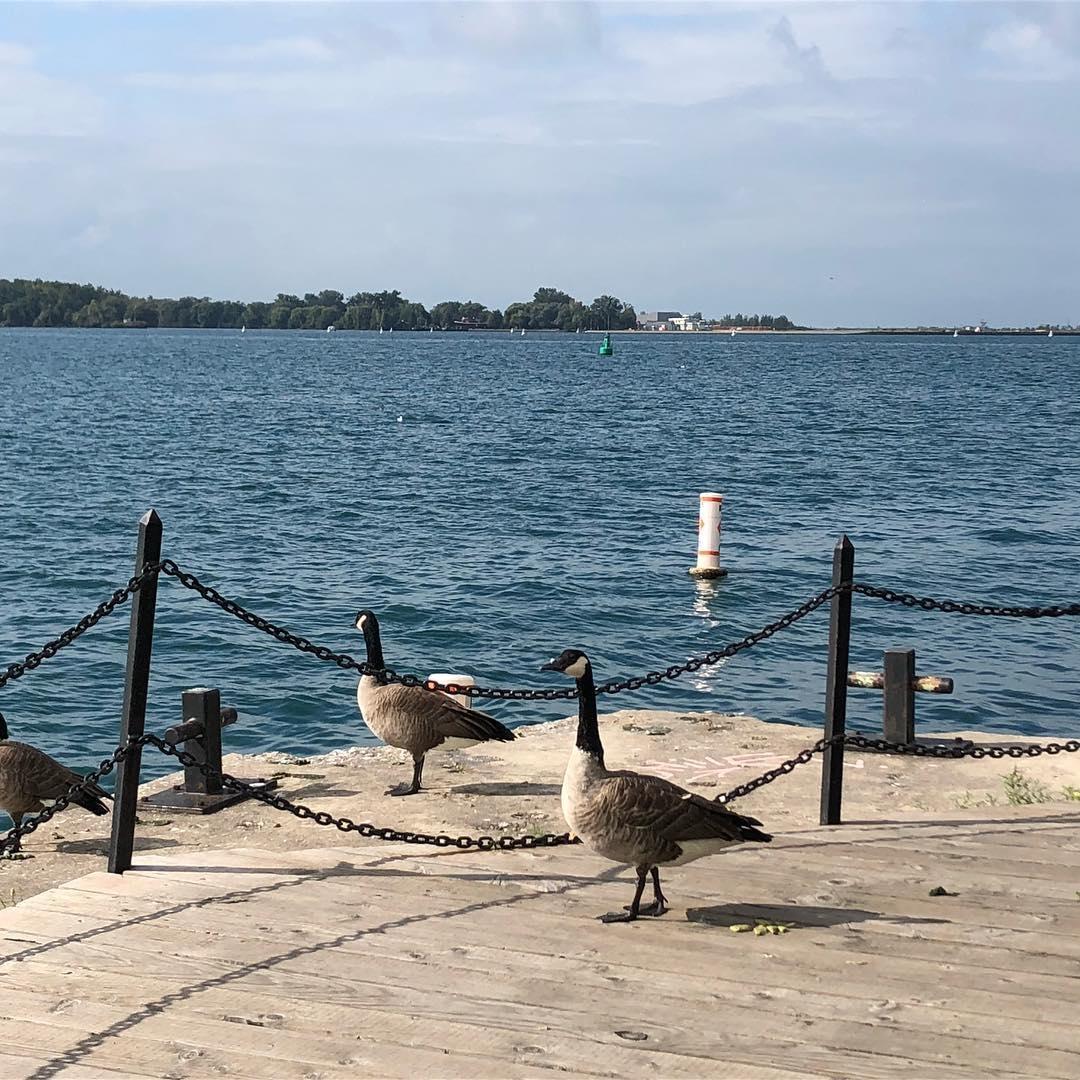walking on the docks