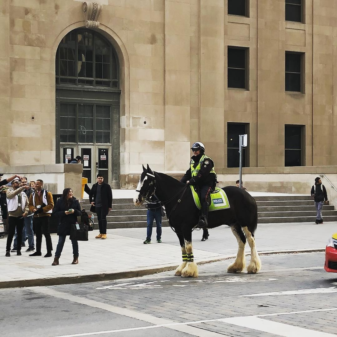 police officer on a horse