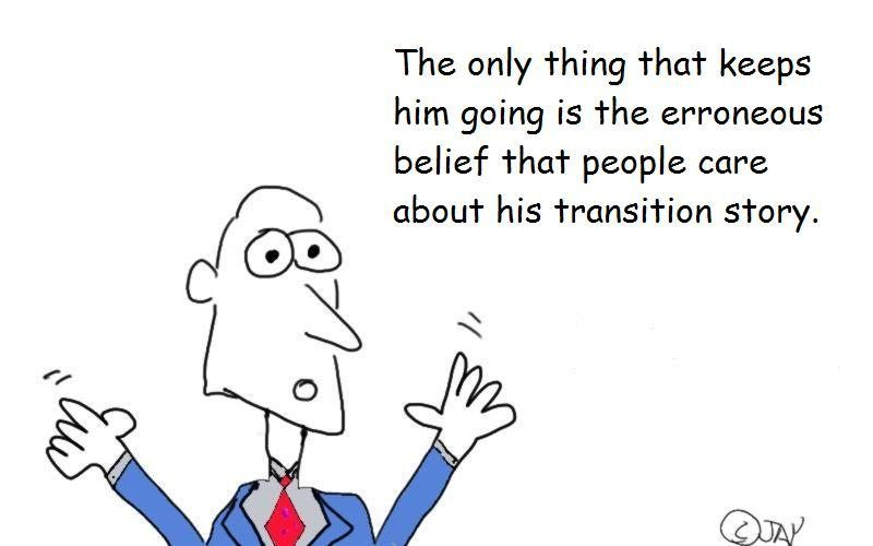 transition-story