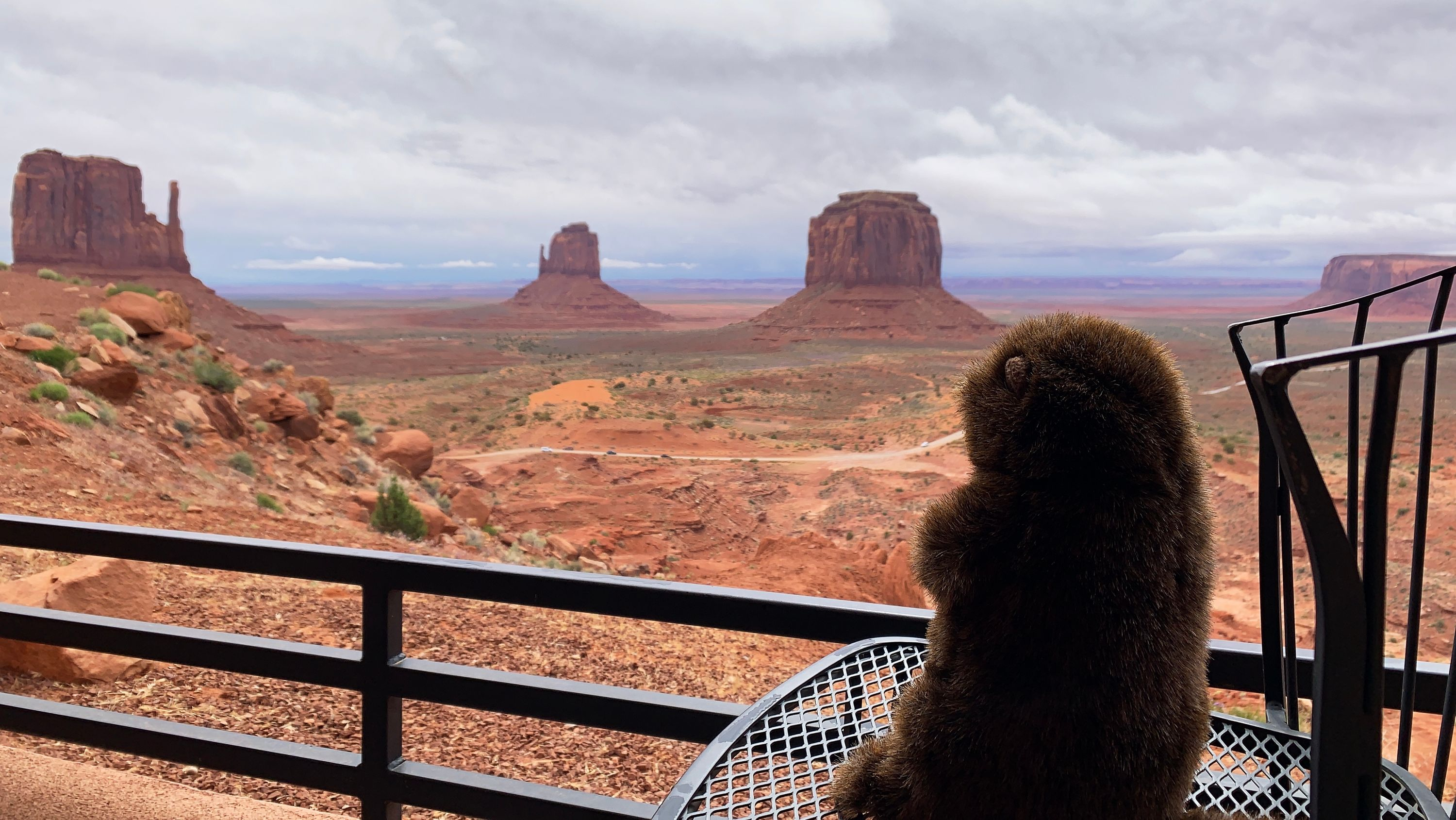 The Groundhog sits on his balcony at The View Hotel at Monument Valley and wonders how the hotel was named.