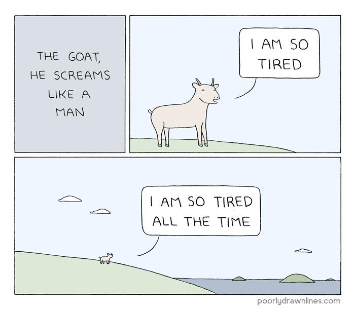 The goat, he screams like a man