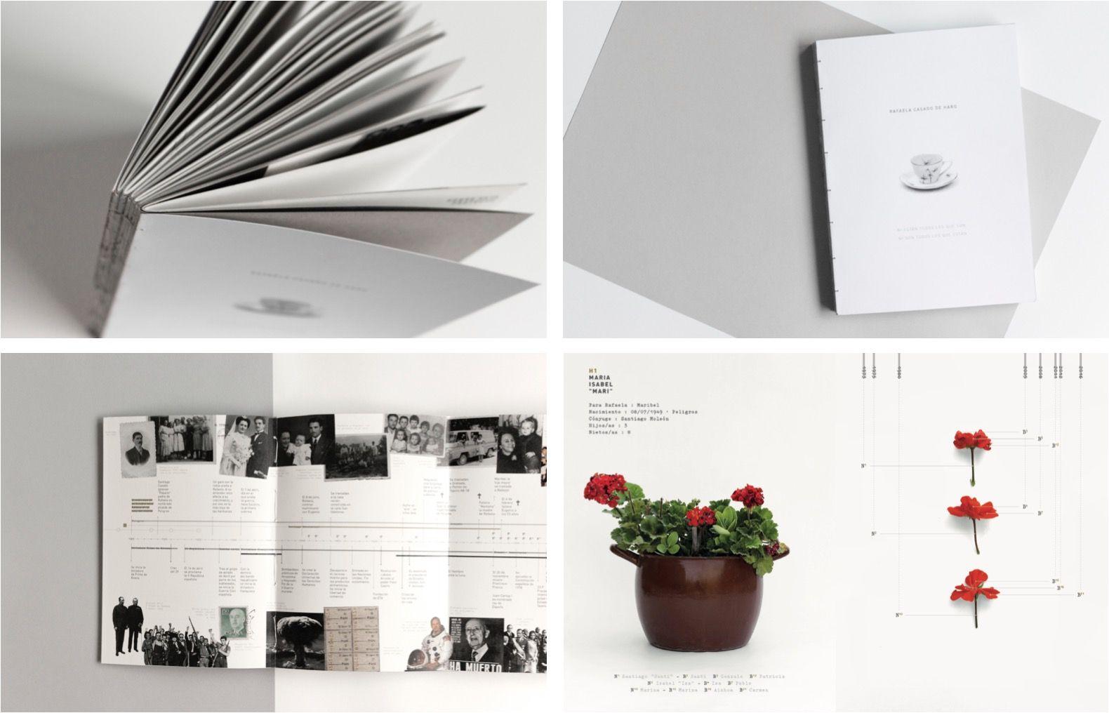 Lourdes Lucena y el libro familiar con visualizaciones de datos