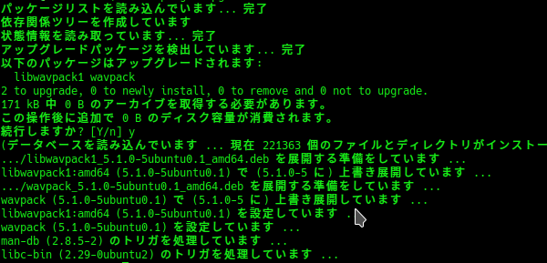 Linux command line showing program messages in Japanese in green text on a black background (this will be important later on).