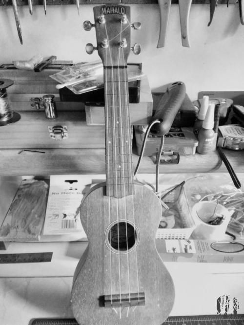 The mentioned ukulele lacking in frets