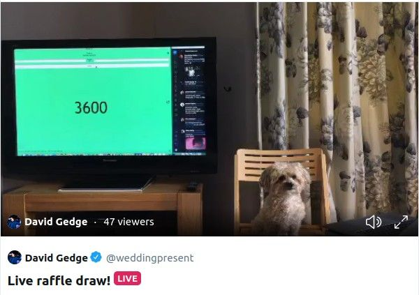 A small dog sat in front of a television with nothing else going on