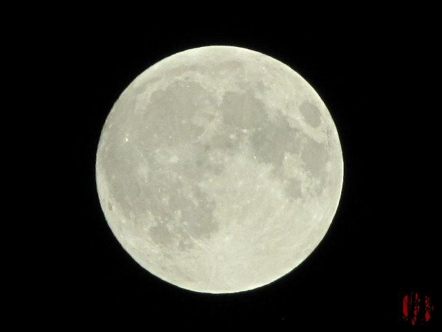 """Photograph of the moon taken early on the night of a combined total lunar eclipse and a """"super moon""""."""