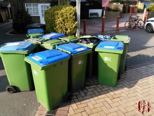 A large number of domestic waste and recycling wheely bins closely grouped together.