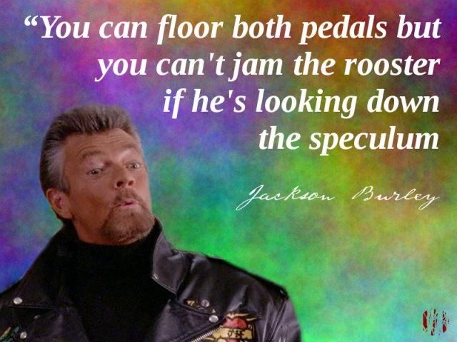"""""""You can floor both pedals but you can't jam the rooster if he's looking down your speculum"""""""