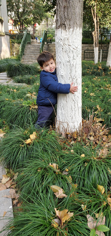 eli the treelover