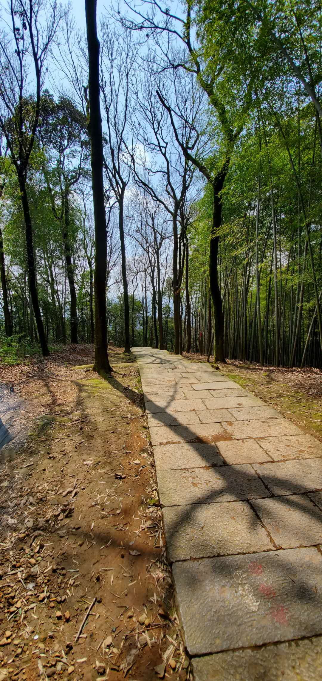 hiking to Five Clouds Temple (五云寺)in Hangzhou