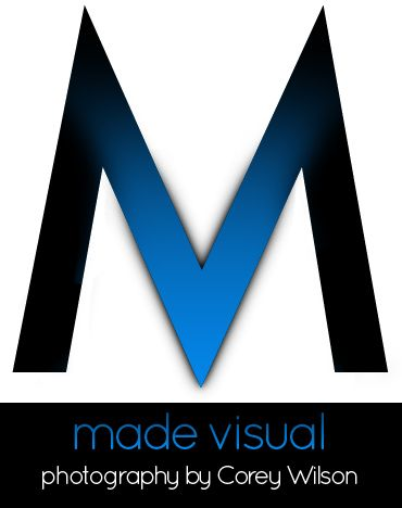 made visual logo
