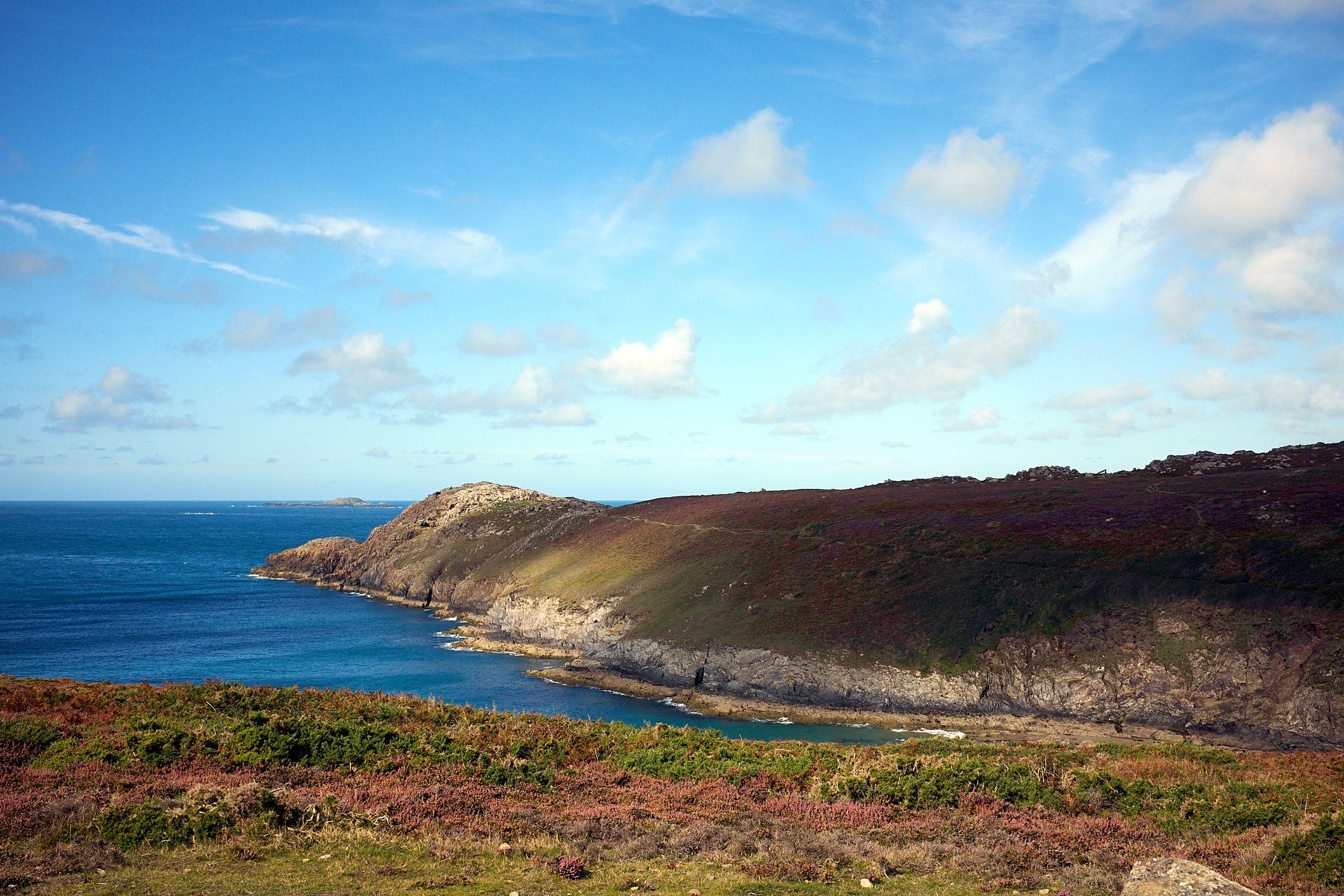 heather coloured headland