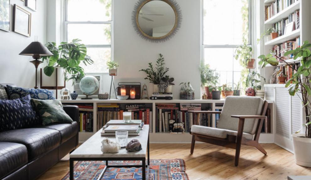 apartment [plants][shelves][living room]