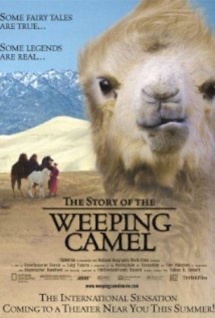 Die Geschichte vom weinenden Kamel (The Story of the Weeping Camel)