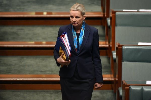 Federal environment minister Sussan Ley