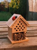 I made an insect house.