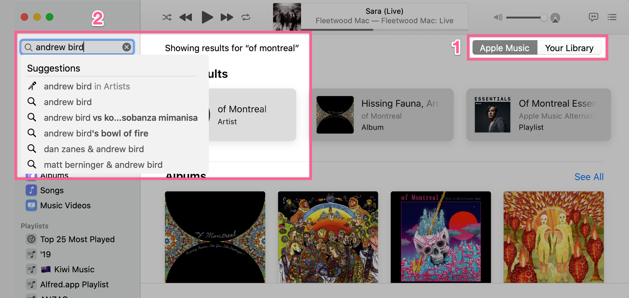 Example search in Apple Music